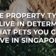 The property type you live in determines what pets you can have in Singapore! - Home Quarters SG